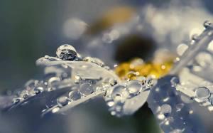 marijo's water droplets