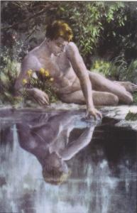 NarcissusTrans