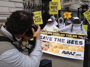 Beekeepers help deliver  massive petition to Downing Street